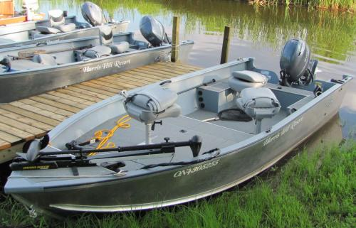18' Deluxe Boat with 50 hp 4 stroke motor Lake of the Woods