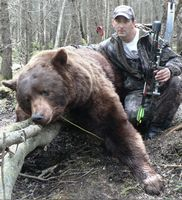 Black Bear Hunting, Ontario Hunting, Bear Hunts